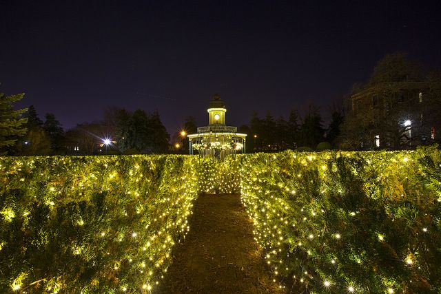 9 Botanical Gardens That Are More Beautiful At Night   Botanical Gardens