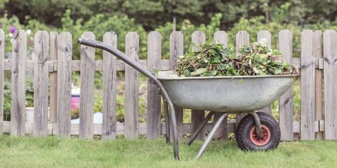 10 Things to Do Now to Prepare Your Garden for Next Spring