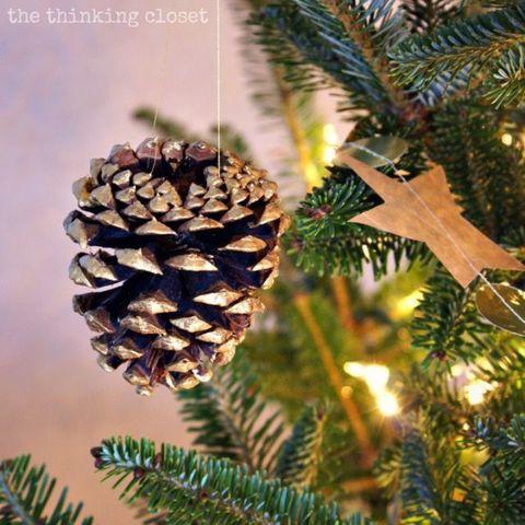 Pinecone ornaments pinecone holiday diys pinecone ornament solutioingenieria Gallery