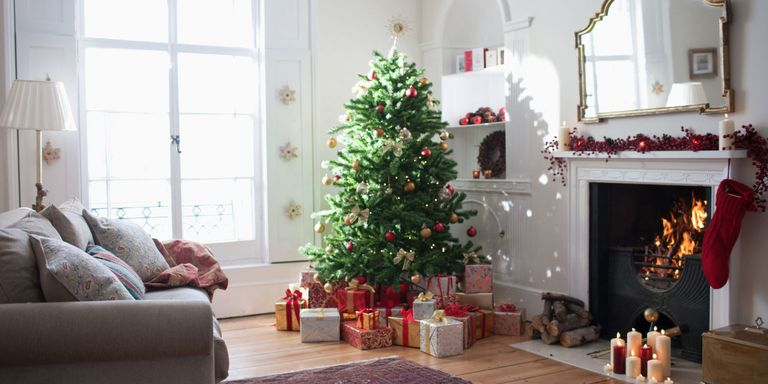 Why Do We Still Cut Down Christmas Trees? - Christmas Trees To Cut Down