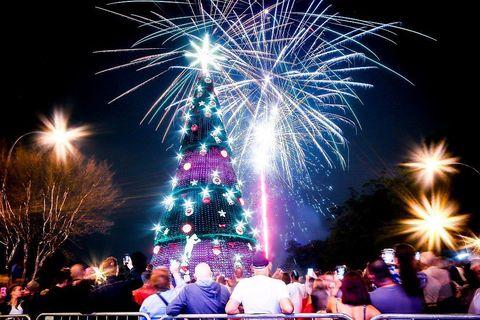Sao Paulo Christmas Tree