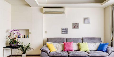 Interior design, Room, Living room, Furniture, Wall, Floor, Couch, Ceiling, Flowerpot, Interior design,