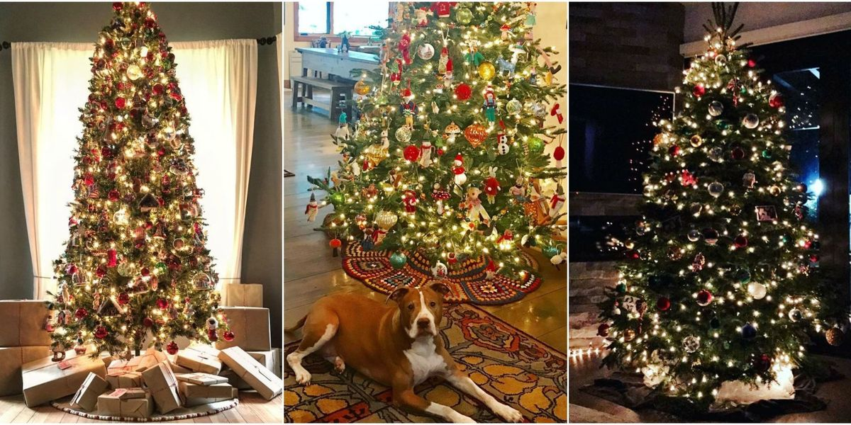 Best Celebrity Holiday Decorations, Christmas Trees ...