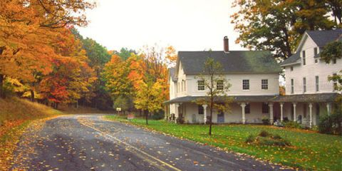 Window, Road, Property, Leaf, Deciduous, House, Tree, Road surface, Building, Real estate,
