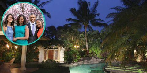 Property, Real estate, Woody plant, Arecales, Swimming pool, Resort, Palm tree, Tropics, Backyard, Yard,