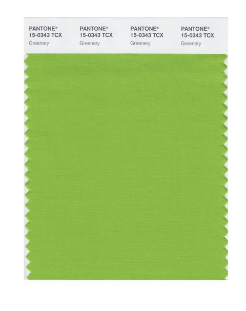 Pantone Greenery Colour of the Year 2017