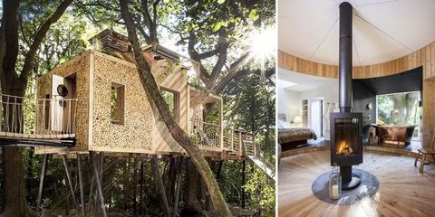 We've Never Seen a Tree House This Luxurious Before