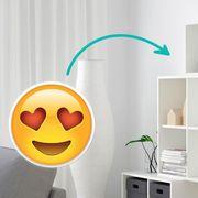 Room, Shelving, Shelf, Wall, Interior design, Vegetable, Orange, Squash, Grey, Calabaza,