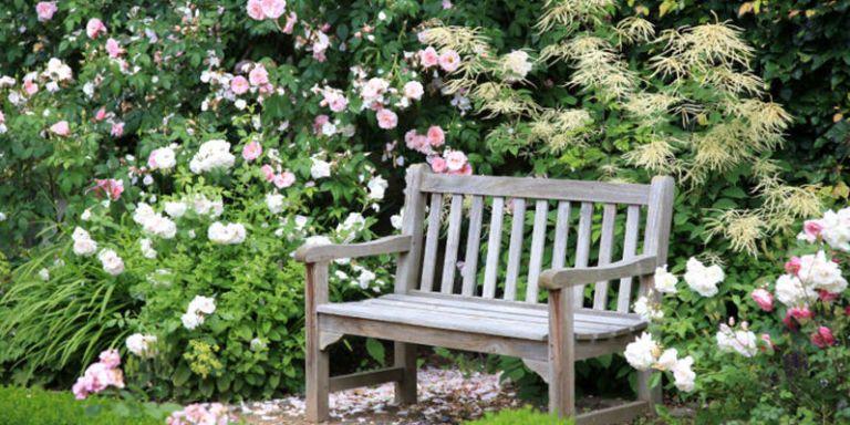 5 Garden Tweaks That Will Make You Happier and Healthier