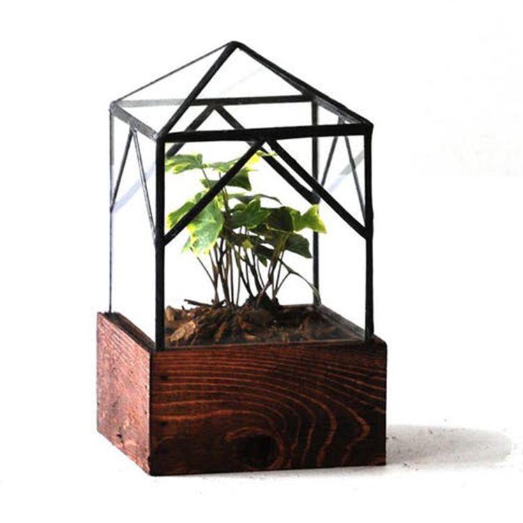 LeadHead Glass Ellias Trap Terrarium