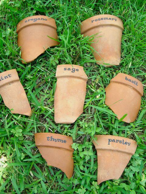 Grass, Flowerpot, Plant, Shoe,