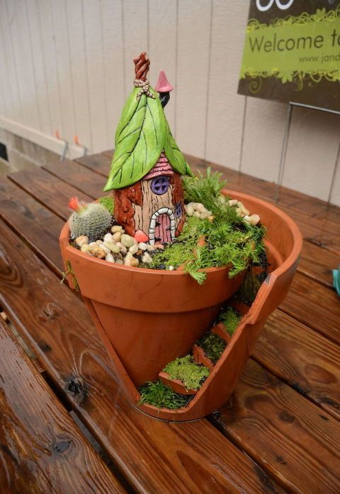 Flowerpot, Plant, Houseplant, Wood, Flower, Cactus, Herb, Table, Food, Vegetable,