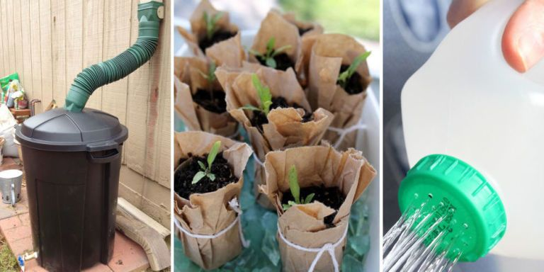 16 Genius Garden Hacks That Turn Trash Into Treasure