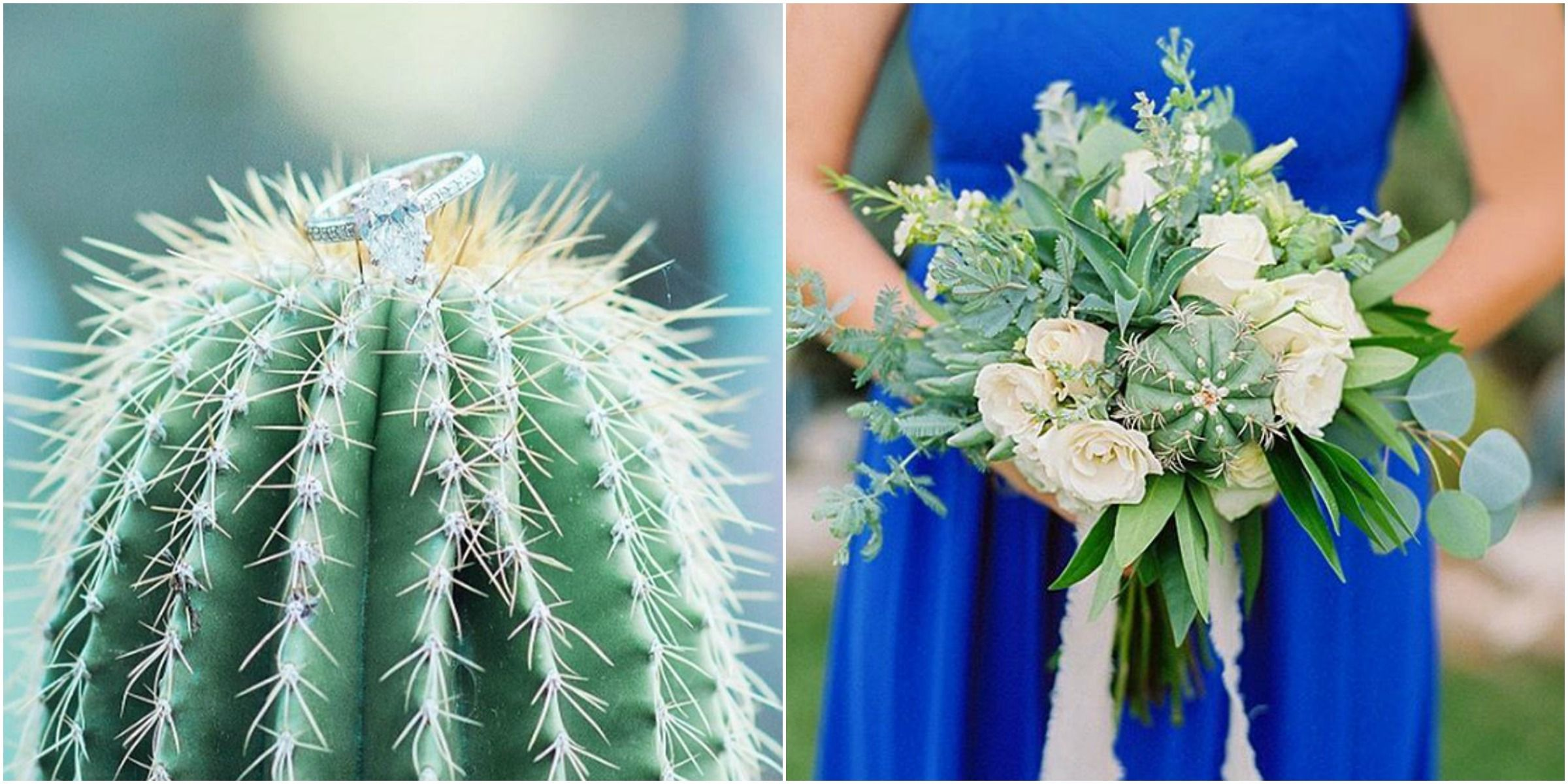 Wedding Cactus Trend - Cacti Wedding Ideas