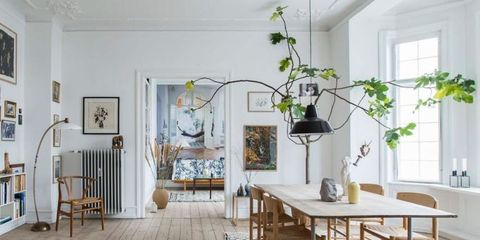 Oversized House Plants - Large Indoor Plants on indoor bonsai plants, container flower garden design, indoor plants for bathrooms, plant rooms design, indoor plants and landscaping,