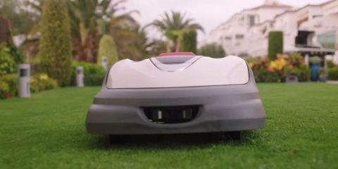 The Roomba for Lawns Is a Yard Work Game-Changer