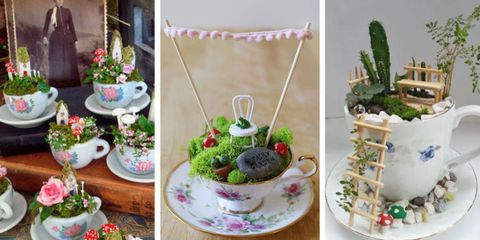 Teeny-Tiny Teacup Fairy Gardens Are Trending, and We Are Obsessed