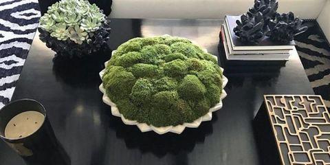 khloe kardashian moss centerpiece