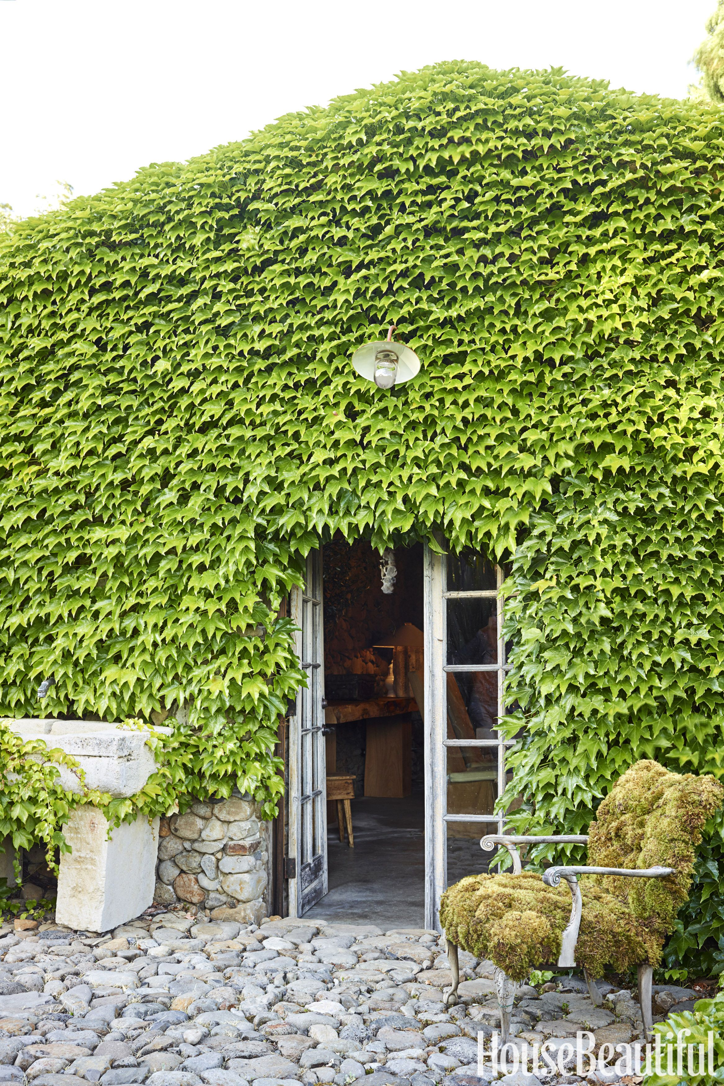 ivy-covered exterior