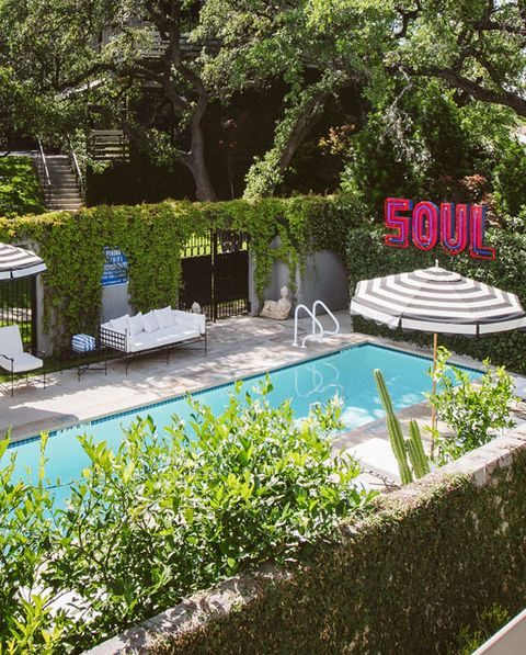 Swimming pool, Property, Garden, Botany, Leisure, Shrub, Botanical garden, Backyard, Tree, Real estate,
