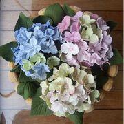 Flower, Pink, Petal, Plant, Hydrangeaceae, Hydrangea, Cut flowers, Flowering plant, Centrepiece, Bouquet,
