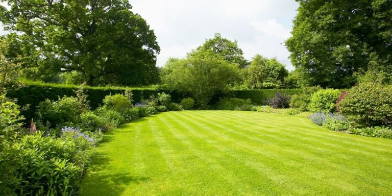 15 Ways to Make Your Lawn the Envy of the Block