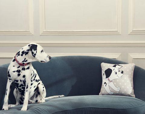 Disney x Cath Kidston 101 Dalmatians collection