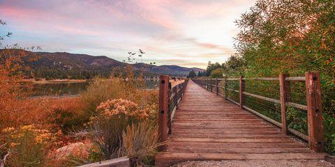 Natural landscape, Sky, Nature, Tree, Cloud, Leaf, Morning, Walkway, Landscape, Sunlight,