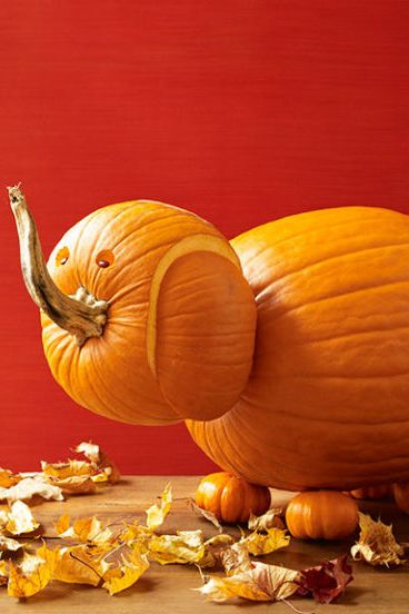 Cool pumpkin carving designs creative ideas for jack