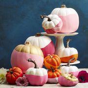 balloween halloween pumpkins