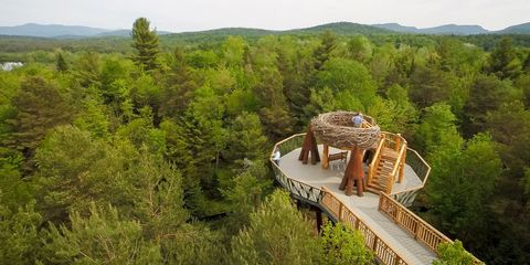 Wild Walk in the Adirondacks Is an Outdoor Adventure Like No Other