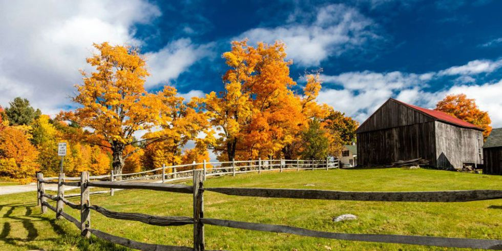 Autum Images: Gorgeous Photos Of Autumn Leaves