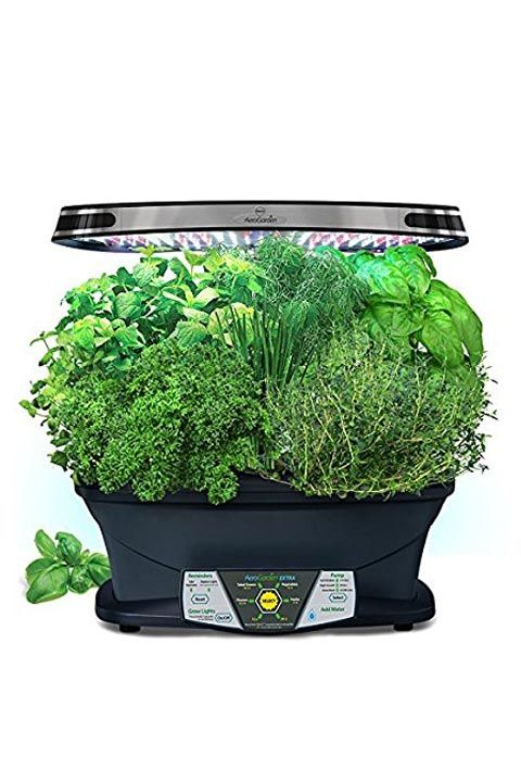 17 Indoor Herb Garden Ideas - Kitchen Herb Planters