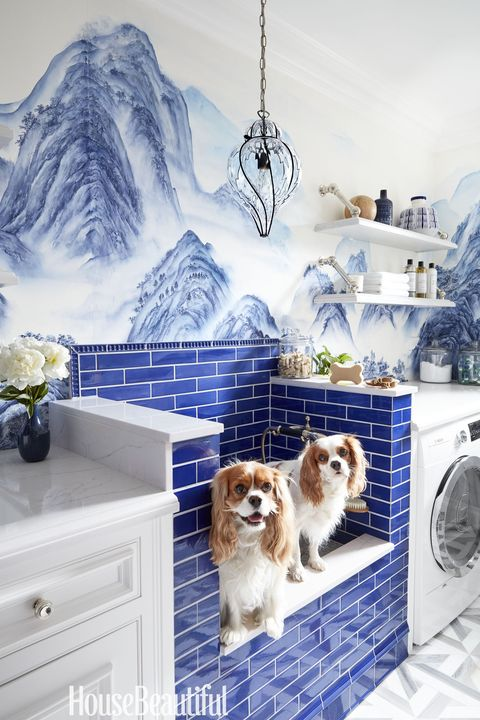 Laundry Room Inspiration Dog Shower Ideas