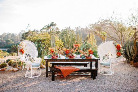 Nature, Furniture, Red, Room, Property, Table, Garden, Botany, Home, Interior design,