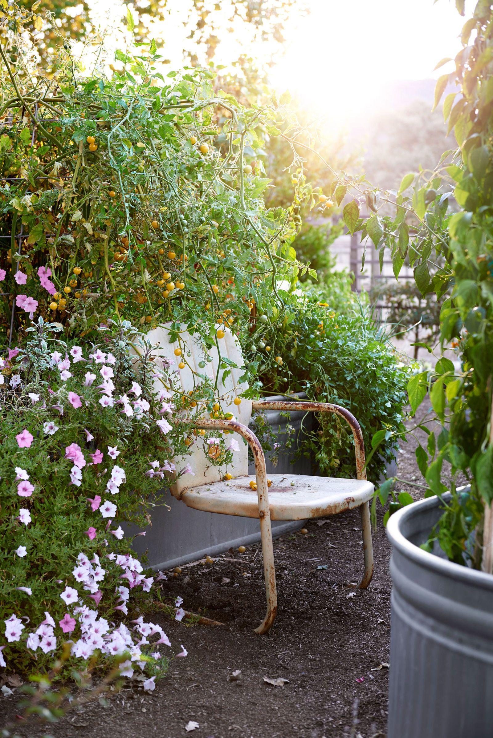 28 New Ideas for Your Garden