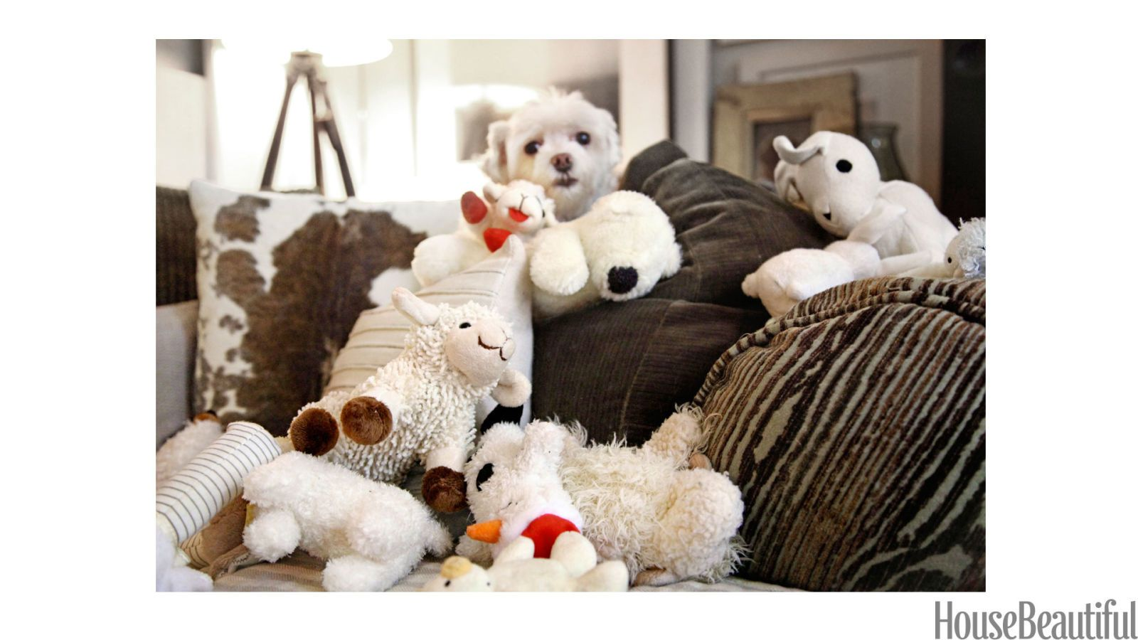 maltese dog and lamb toys