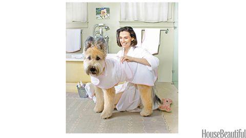 dog in a bathrobe
