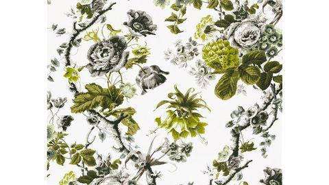 Botany, Art, Artwork, Illustration, Painting, Doodle, Drawing, Graphics, Sketch, Pedicel,