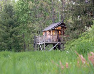 Treehouse exterior