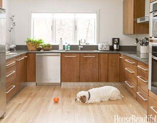 2010 Kitchen Designs Best Kitchens 2010
