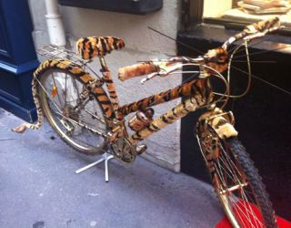 bike with a print on it