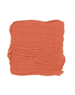 coral paint swatch