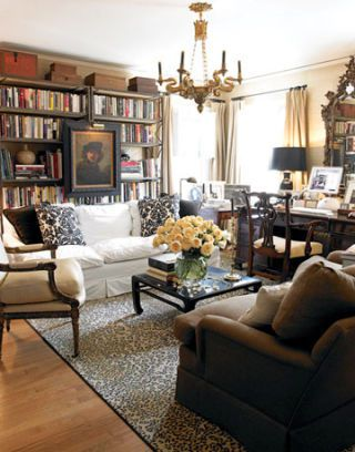 Cozy Living Room with Books and Leopard Rug