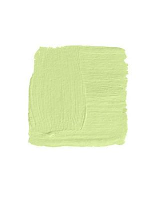 Charming Light Green Paint Swatch