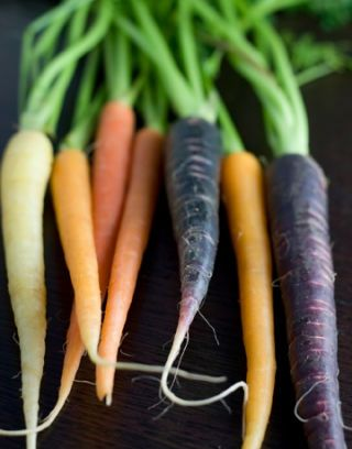 colorful heirloom carrots