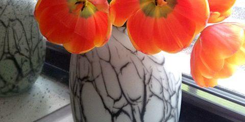 Home Design Bloggers Reveal Their Color Inspiration
