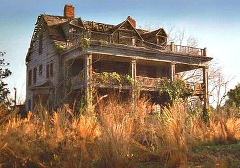 Vegetation, Property, Architecture, Photograph, House, Real estate, Building, Home, Land lot, Facade,