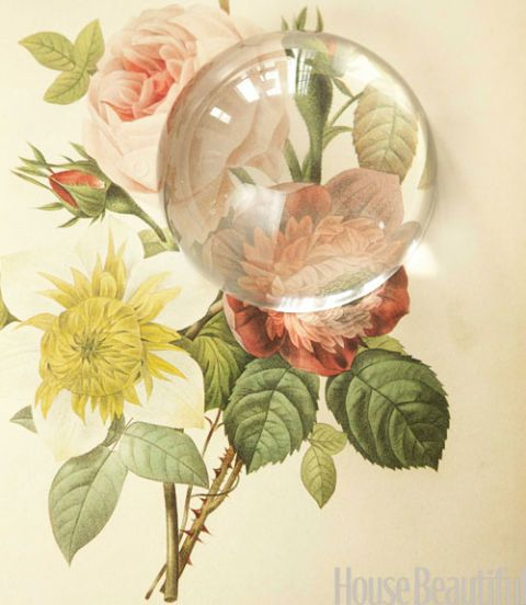 a flower print under a clear glass paperweight