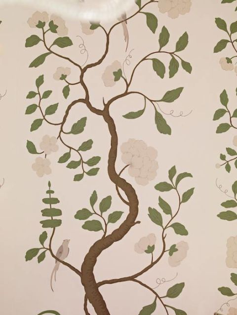beige wallpaper with tree that extends up with green leaves